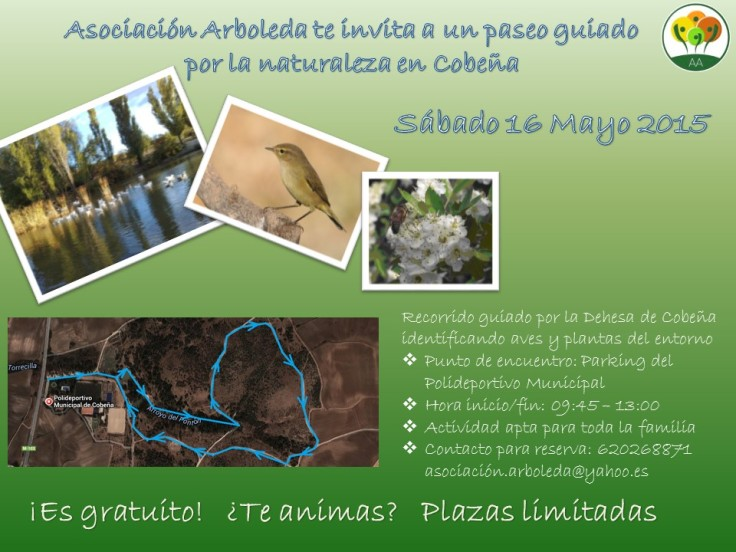 Arb_Salida_Naturaleza_Cartel