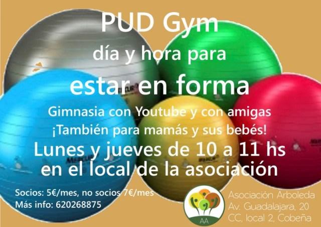Arb_PUD_gym_201509_web